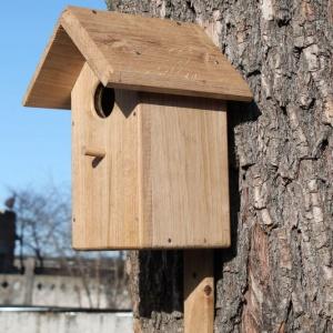 Скворечник для птиц - дубовый №5