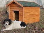 Будка для собаки Bud XL 115x80x80 (3002)