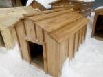 Будка дубовая  для пса (3030)