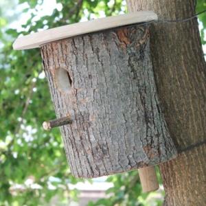 Дупло для птиц №8